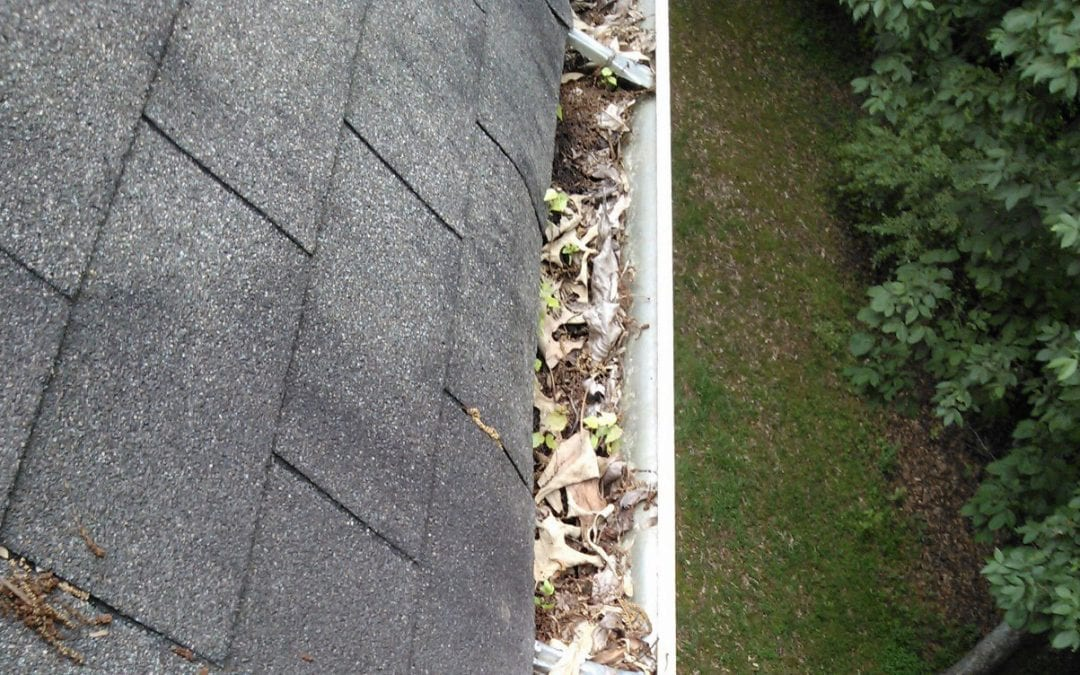 Cleaning Gutters Made Simple